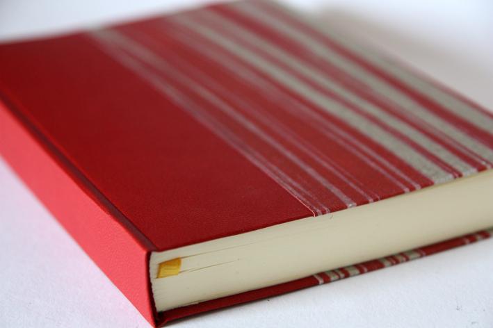 1 year diary red stripe.jpg